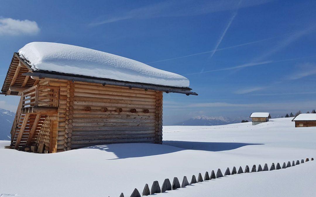Sull'Alpe di Rodengo per l'ultima neve