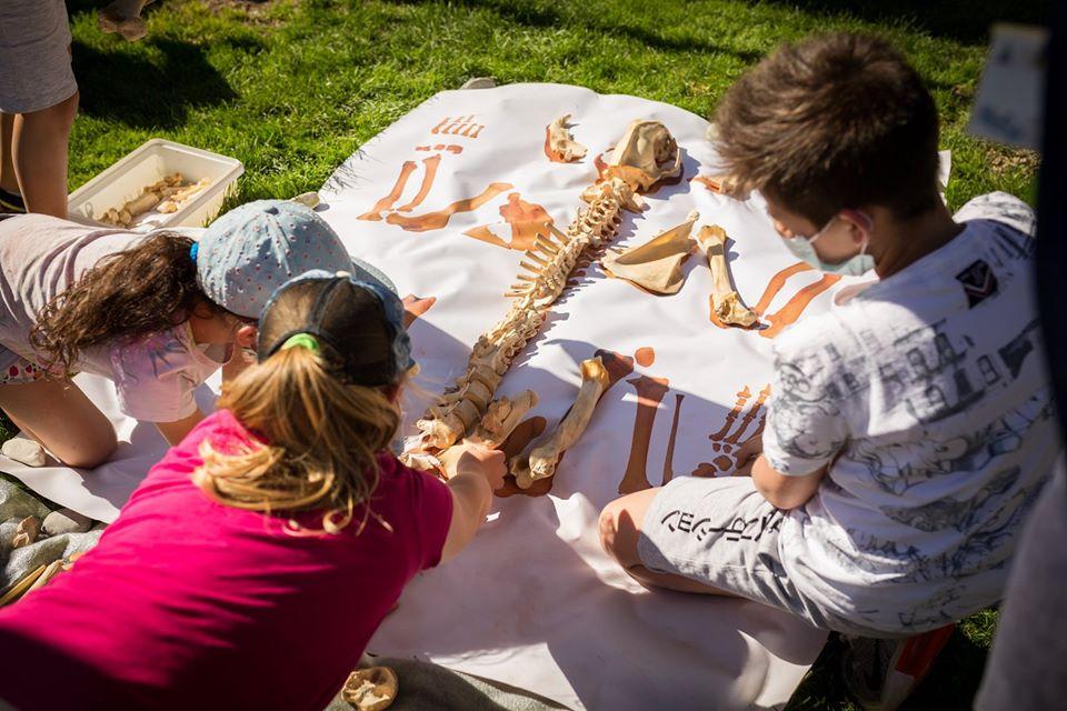 Summertime MUSE: un'estate di iniziative!