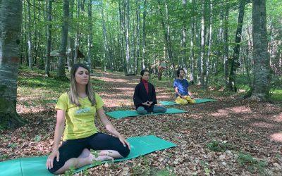 Meditazione, yoga (e non solo) nella natura